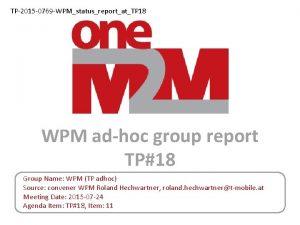 TP2015 0769 WPMstatusreportatTP 18 WPM adhoc group report