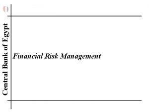 Central Bank of Egypt Financial Risk Management Central