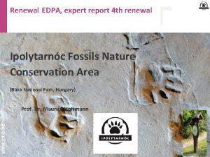 Renewal EDPA expert report 4 th renewal Ipolytarnc