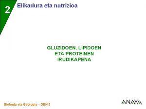 2 Elikadura eta nutrizioa GLUZIDOEN LIPIDOEN ETA PROTEINEN