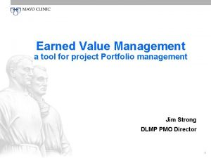 Earned Value Management a tool for project Portfolio