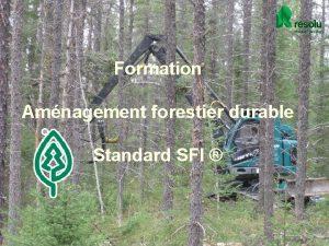 Formation Amnagement forestier durable Standard SFI 1 Standard
