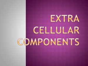 EXTRA CELLULAR COMPONENTS AND CONNECTIONS Extra cellular components