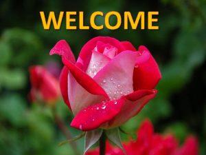 WELCOME TEACHER IDENTITY Name Name Joysree Debnath Title