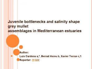 Juvenile bottlenecks and salinity shape grey mullet assemblages