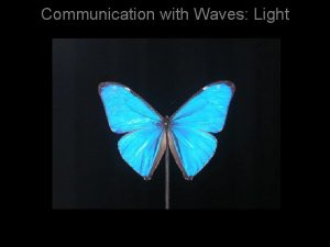Communication with Waves Light The electromagnetic spectrum Insects
