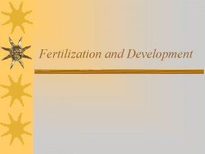 Fertilization and Development Fertilization Fertilization of the Ovum