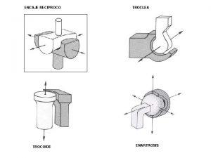 ENCAJE RECIPROCO TROCOIDE TROCLEA ENARTROSIS TROCOIDE ART RADIOCUBITAL