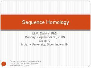 Sequence Homology M M Dalkilic Ph D Monday