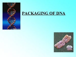 PACKAGING OF DNA DOUBLE HELIX STRUCTURE OF DNA