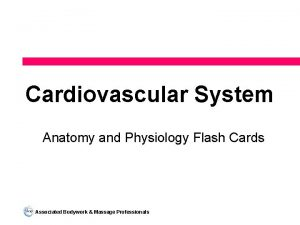 Cardiovascular System Anatomy and Physiology Flash Cards Associated