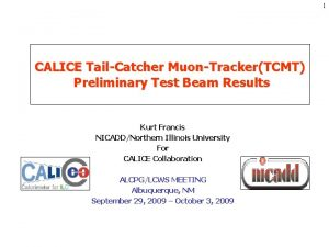 1 CALICE TailCatcher MuonTrackerTCMT Preliminary Test Beam Results