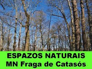 ESPAZOS NATURAIS MN Fraga de Catass Chamada tamn