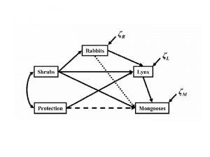 Structural Equation Modeling A Network Modeling Framework a