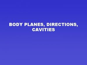 BODY PLANES DIRECTIONS CAVITIES BODY PLANES LINE THROUGH