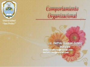 Comportamiento Organizacional Universidad San Pedro Lic Bethsy Raquel