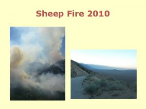 Sheep Fire 2010 Issues Firefighter and public safety