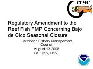 Regulatory Amendment to the Reef Fish FMP Concerning