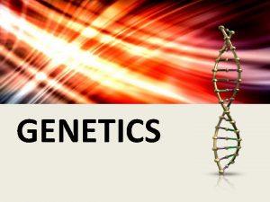GENETICS GENES 1865 Gregor Mendel studied inheritance patterns
