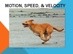 MOTION SPEED VELOCITY CHAPTER 9 SECTION 1 MOTION