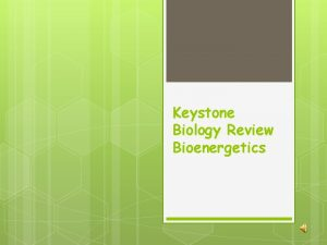 Keystone Biology Review Bioenergetics Photosynthesis Is the process