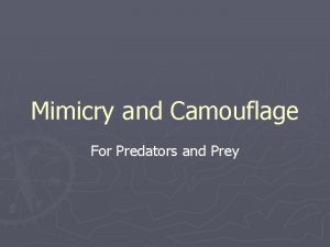 Mimicry and Camouflage For Predators and Prey Mimicry