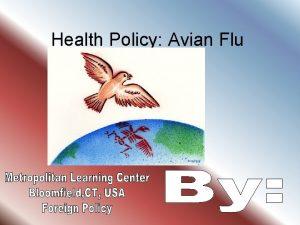 Health Policy Avian Flu Influenza Influenza or the