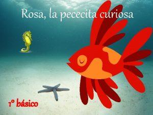 Rosa la pececita curiosa 1 bsico Rosa era