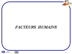 FACTEURS HUMAINS SEFA 1 INTRODUCTION Ltude des FACTEURS