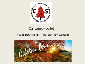 Our weekly bulletin Week Beginning Monday 19 th