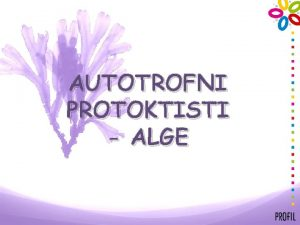 AUTOTROFNI PROTOKTISTI ALGE ALGE PODJELA SMEE ALGE ZELENE