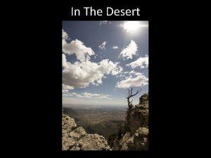 In The Desert In The Desert Numbers 20