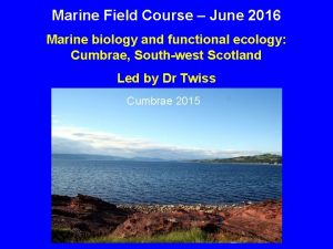 Marine Field Course June 2016 Marine biology and