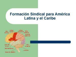 Formacin Sindical para Amrica Latina y el Caribe