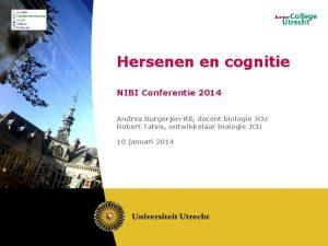 Hersenen en cognitie NIBI Conferentie 2014 Andrea BurgerjonKil