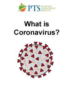 What is Coronavirus The Coronavirus is an illness
