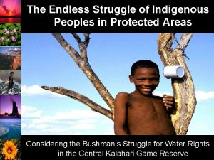 The Endless Struggle of Indigenous Peoples in Protected
