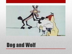 Dog and Wolf Advantages Dog Disadvantages Dog Advantages