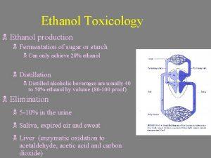 Ethanol Toxicology N Ethanol production N Fermentation of