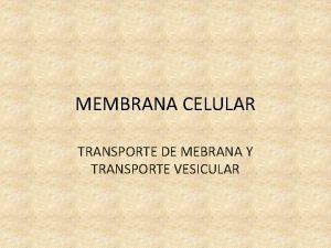 MEMBRANA CELULAR TRANSPORTE DE MEBRANA Y TRANSPORTE VESICULAR