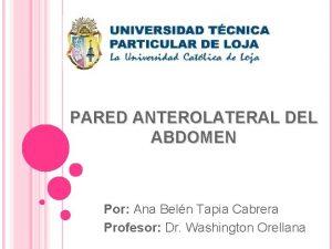 PARED ANTEROLATERAL DEL ABDOMEN Por Ana Beln Tapia