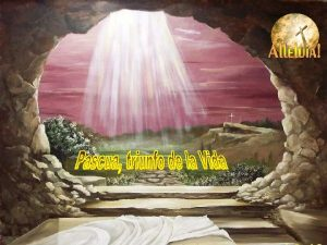 Celebramos hoy con alegra a Cristo Resucitado y