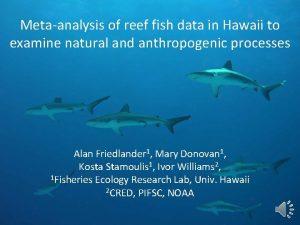 Metaanalysis of reef fish data in Hawaii to
