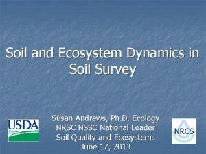 Soil and Ecosystem Dynamics in Soil Survey Susan
