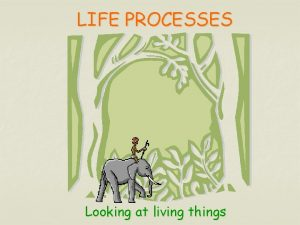 LIFE PROCESSES Looking at living things Living things