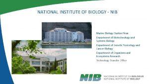 NATIONAL INSTITUTE OF BIOLOGY NIB Marine Biology Station