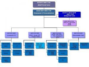 SERVICE DIRECTOR Adult Social Care ASSISTANT DIRECTOR DEPUTY