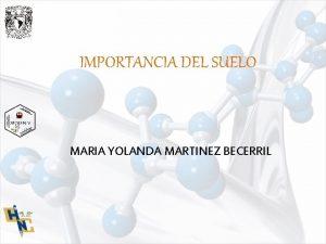 IMPORTANCIA DEL SUELO MARIA YOLANDA MARTINEZ BECERRIL IMPORTANCIA