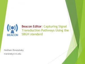 Beacon Editor Capturing Signal Transduction Pathways Using the