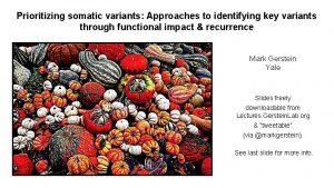 Prioritizing somatic variants Approaches to identifying key variants
